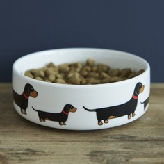 Sweet William Dachshund Dog Bowl