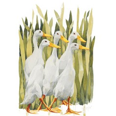 "Mary Ann Rogers Limited Edition ""Indian Runner Ducks"" Print"