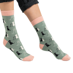 Ladies Labradors Socks in Duck Egg